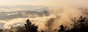 Header-Fog-with-Mountains-lighter